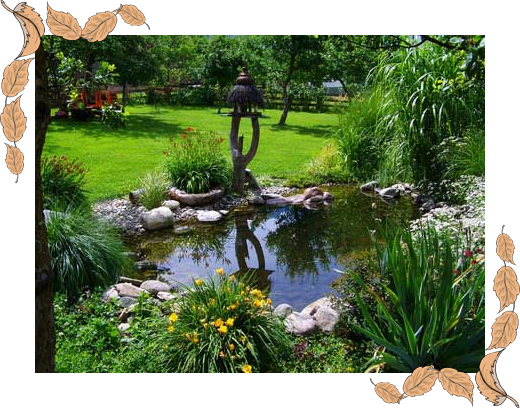 How to build a low maintenance garden pond flexible pond for Backyard pond maintenance