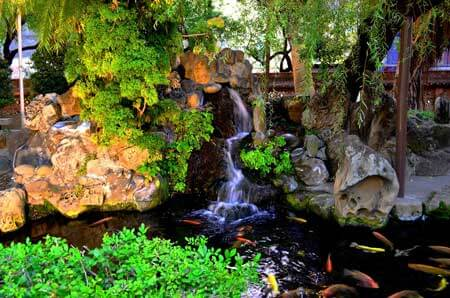 A garden pond featuring a waterfall meandering down rocks