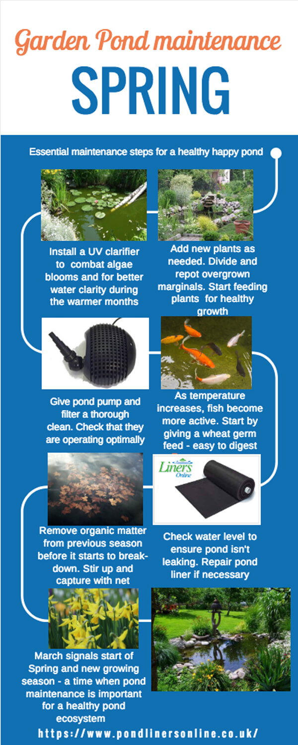 Spring pond maintenance checklist
