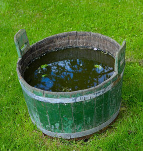 Wooden barrel that can be lined with a PVC pond liner to make a pond