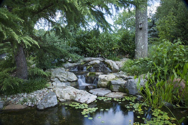 Large garden pond aerated by a stream and waterfall