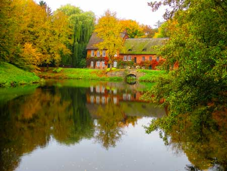 Garden pond surrounded by Autumnal trees